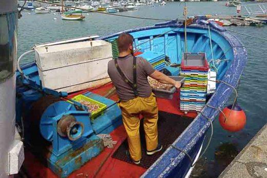 Pêcheur au port du Belon à Moelan sur mer