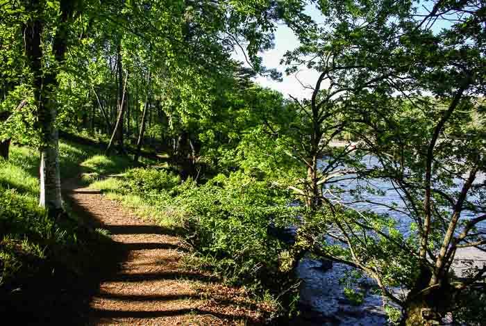 Sentier côtier sur la ria du Belon